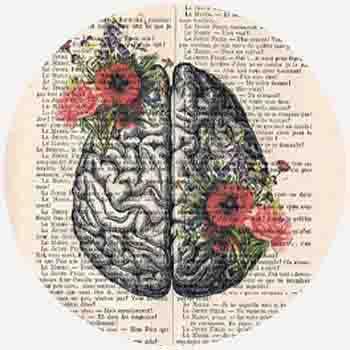 مغز افرادی که اطلاعات عمومی زیادی دارند ، چگونه است